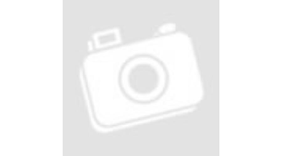 Philips Master Led Leuchtstoffrohre Ho 230v 58w 1500mm Evg 1500mm